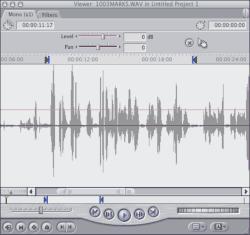 Screenshot of the Viewer window in Final Cut Pro.